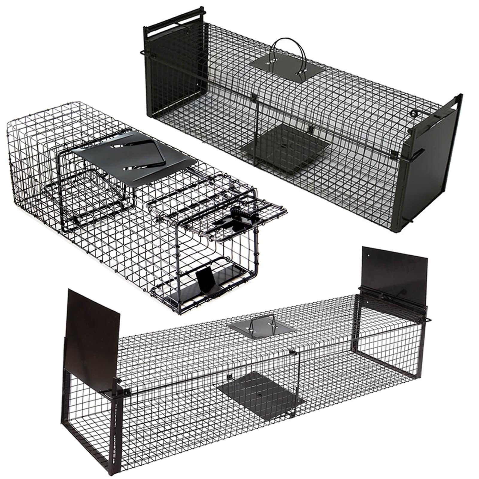 marder gr e ab jetzt wird zugebissen juni bis august. Black Bedroom Furniture Sets. Home Design Ideas