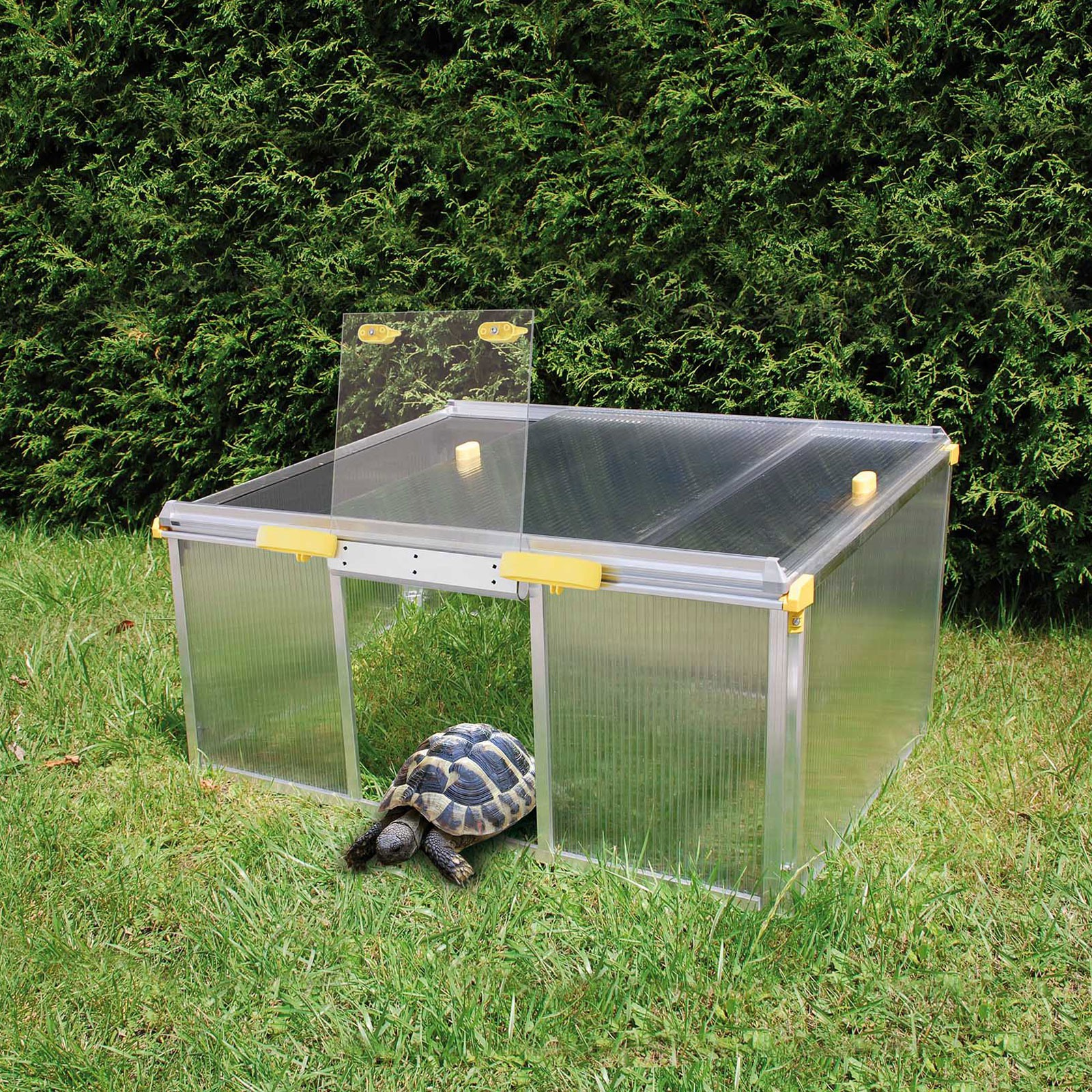 Bild zu Schildkrötenhaus / Kleintierhaus PAULA